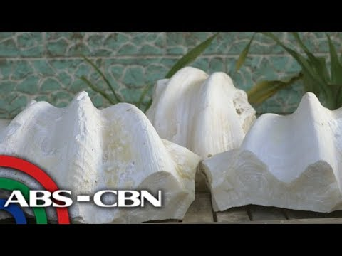 Rated K: Carlos Gayola recalls unearthing alleged giant pearls