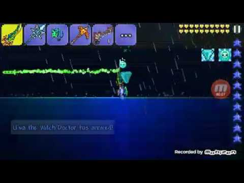 how to get bait terraria