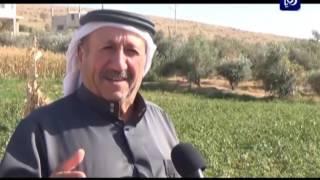 اهمية الغطاء النباتي - محافظة الزرقاء