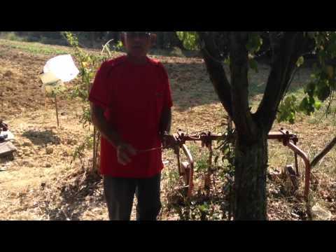 Vito Biundo - Trovare l acqua - YouTube
