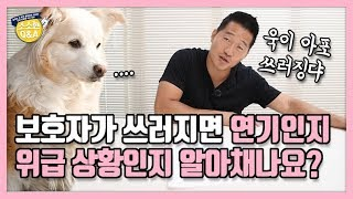 [Eng sub] Do dogs know if it's an emergency or we're just acting?|Hunter Kang's Q&A