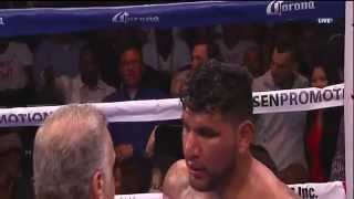 Best knockouts in the heavyweight division 2014
