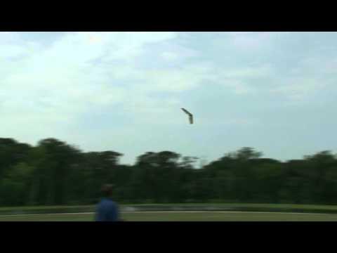 Hacker HotWing 1200 EPP flying wing