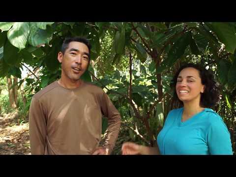 The Chocolate Garage: in Hawaii EPISODE 3