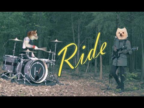 Twenty one Doggos - Ride