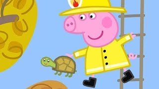 Peppa Pig English Episodes | Peppa Pig Saves Mr Tiddles!  Peppa Pig Official