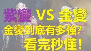 【天堂M】紫變 VS 金變,看完秒懂!【金變到底有多強?】