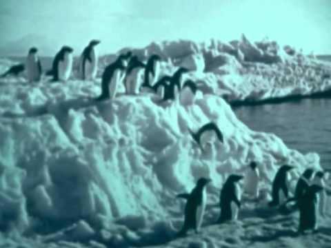 Antarctica - 1975