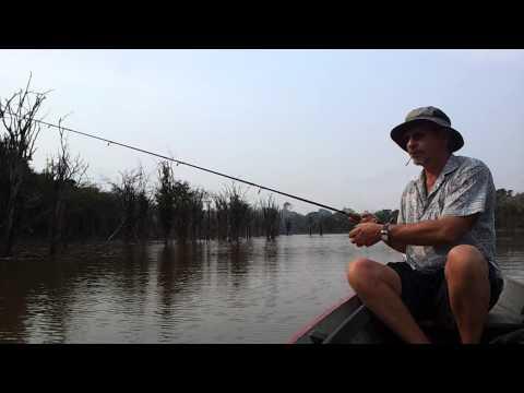 Kalimantan Adventurer