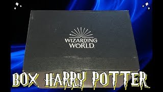 Box di HARRY POTTER ufficiale