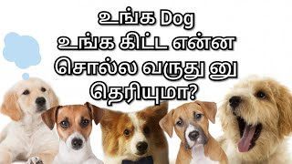How to understand Dog's behaviour? | Tamil | Creative Classroom