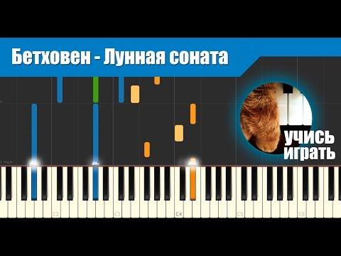 Фортепиано Ноты для фортепиано Бетховен Л ван Сонаты