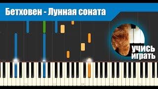 Бетховен - Лунная соната (урок)