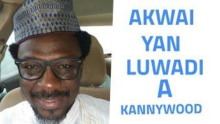 Download Video Nakusa Na Bayyana Yan Luwadi A Kannywood - General BMB MP3 3GP MP4