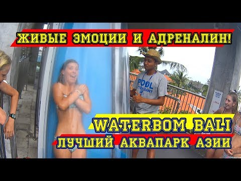 The best aqua park in Asia is Waterbom Bali. Prices, extreme, review | Movement - Life №18