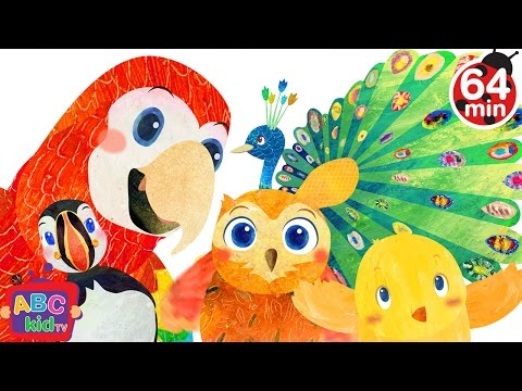 Bird Song 2D  +More Nursery Rhymes & Kids Songs  Cocomelon ABCkidTV