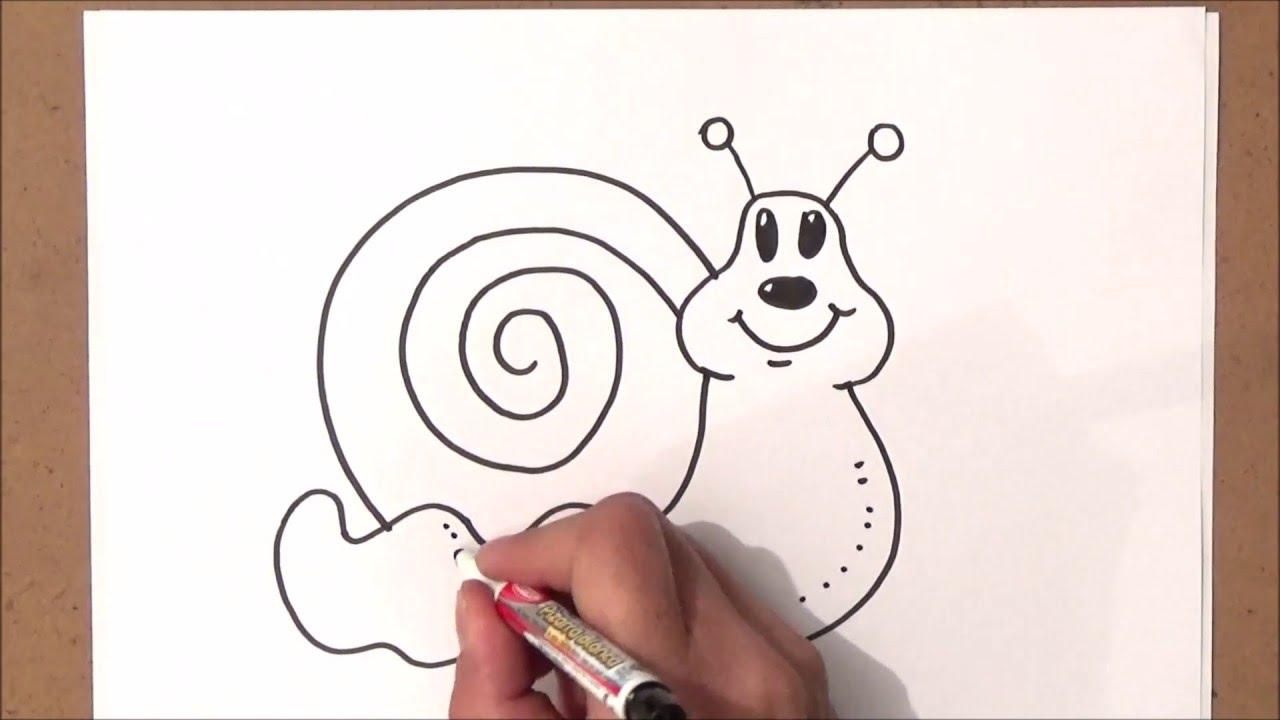 Dibujo De Concha De Caracol De Mar Para Colorear