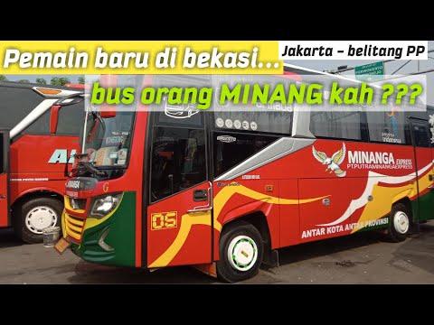 MANTAP !! MINANGA Pendatang Baru Di Bekasi
