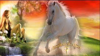 IGOR & FANNY -  Kupię Sobie Konia! - Nowość Teledysk