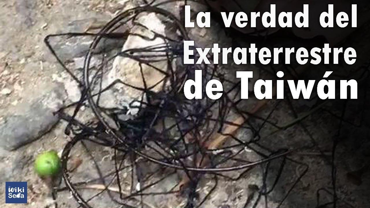 Extraterrestre de Taiwan | La Verdad