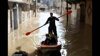 EMERGENECY CALL: MECA for Gaza