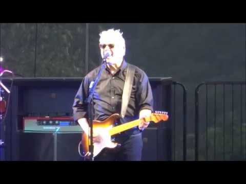 Steve Miller Band - True Fine Love -...