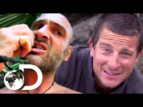 Who Would You Rather Spend a Relaxing Weekend Away With? | Ed Stafford Vs Bear Grylls