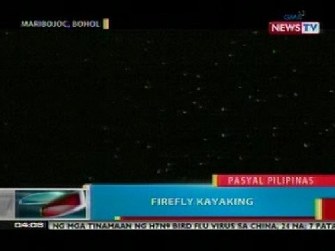 BP: Firefly kayaking, kakaibang summer adventure sa Maribojoc, Bohol
