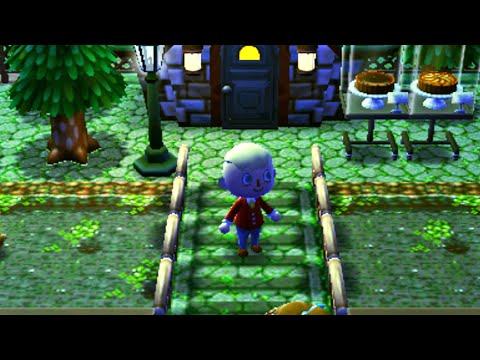 Animal Crossing HHD Journal - River Ducks!