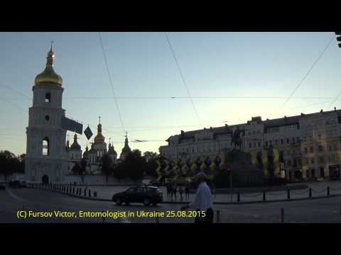 Kiev, Ukraine: Independence Day at Saint Sophia Square 25.08.2015