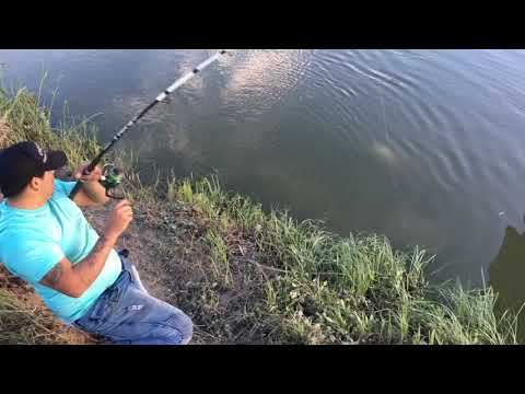 New PB Catfish Right By Down Town Fort Worth