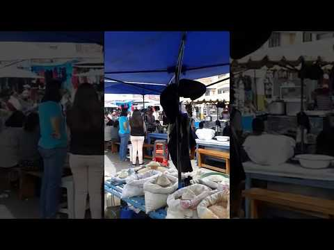 Private Tour to Otavalo Indigenous Market