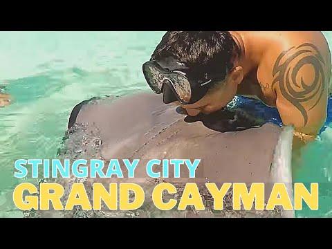 Stingray City - Snorkeling Grand Cayman