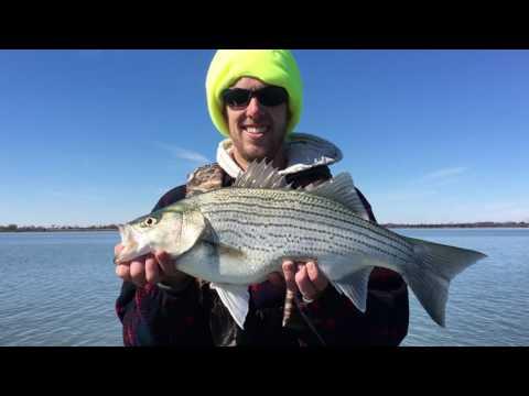 Luke Coffey County Wiper Release 2/25/17