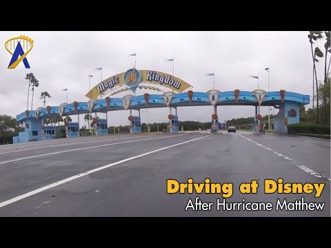Driving on Disney property after Hurricane Matthew curfew lifted