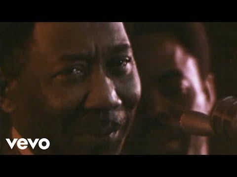 Muddy Waters - Mannish Boy (Live)