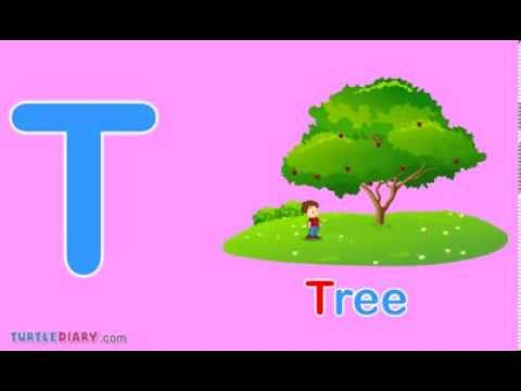 Toddler Words | Words Starting With T   YouTube