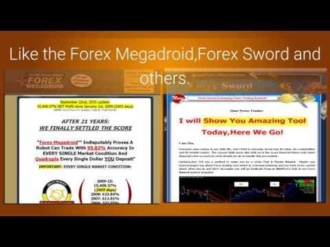build-a-forex-website
