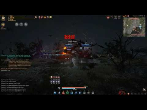 There Is No Lag In BDO