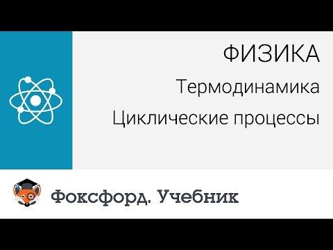 Физика. Термодинамика: Циклические процессы. Центр онлайн-обучения «Фоксфорд»