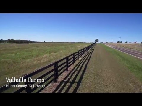 Valhalla Farms | Milam County TX | BRRS