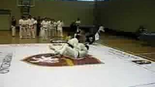 kyokushin vs taekwondo