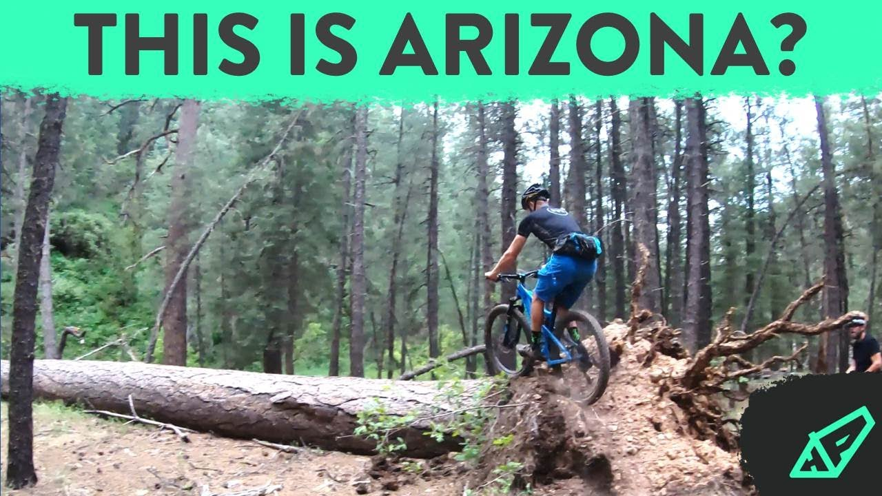 Hardtails on Hard Trails - Riding Kelly Pocket Trail in Flagstaff, AZ