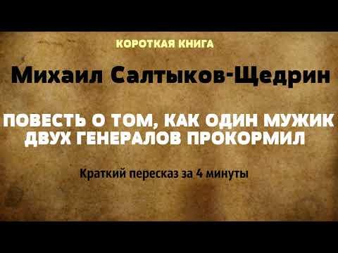 Михаил Салтыков-Щедрин - Повесть о том, как один мужик двух генералов прокормил   КОРОТКАЯ КНИГА