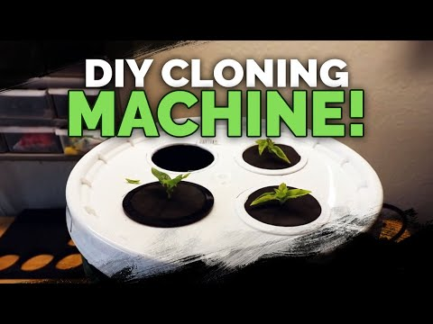 DIY Cloning Machine: Two EASY Ways to Build a Propagation Station