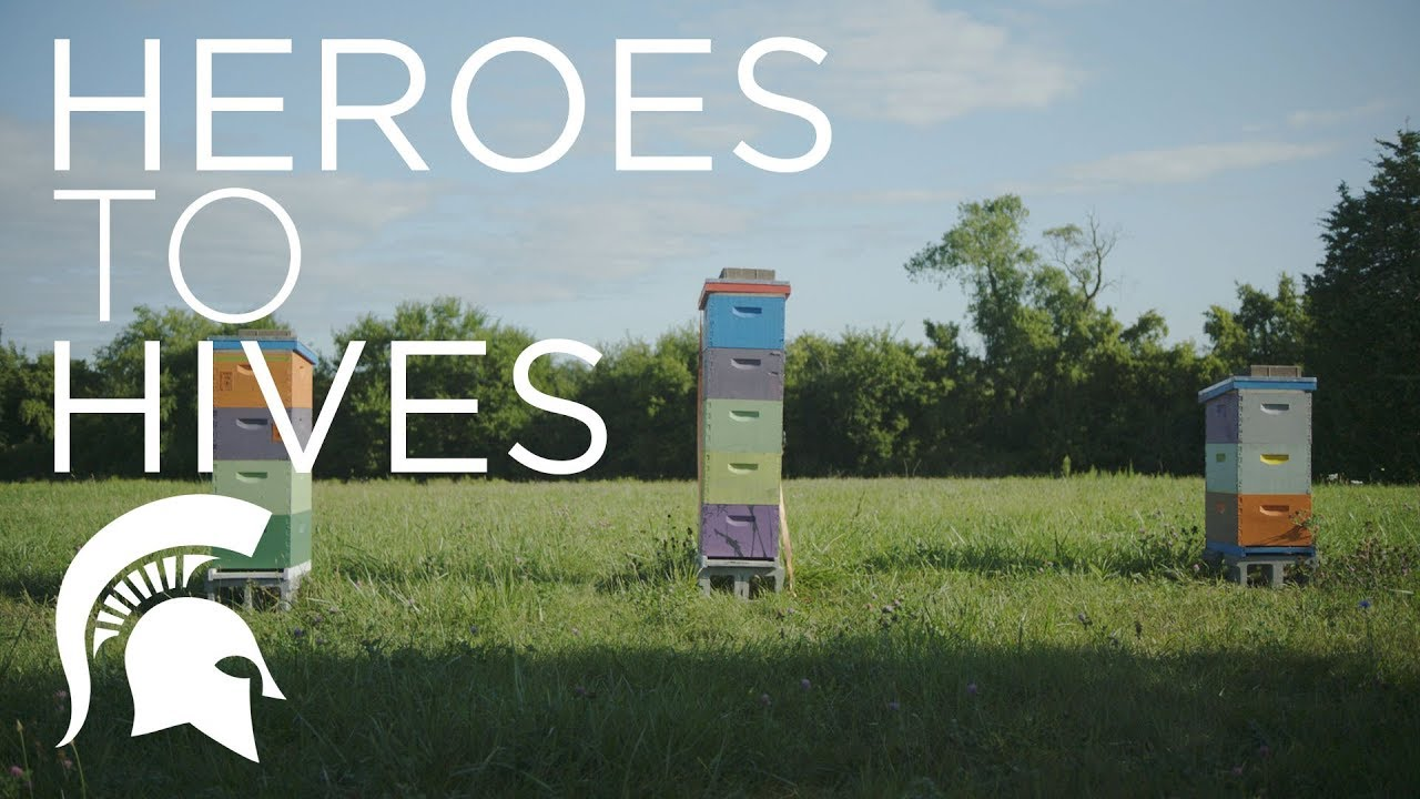 Heroes to Hives | Michigan State University