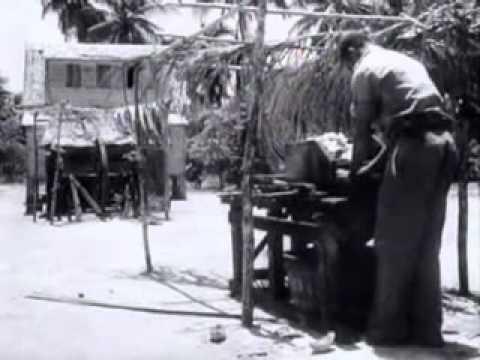 Nieuws uit de West de kokoscultuur van Suriname   1 september 1947