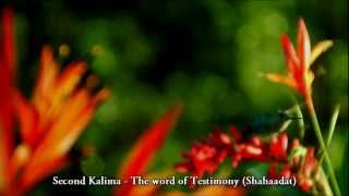 The 6 (six) Kalimas - Basic Faith Teachings of Islam - TrueGuidanceISLAM - HD