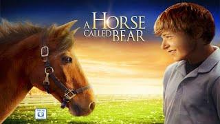 A Horse Called Bear (2015) | Full Movie | Nicholas Ryan Gibbs | Wayne E. Brown | Austin Farnsworth