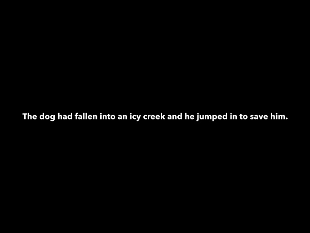 Man jumps into freezing water to rescue dog stuck in creek